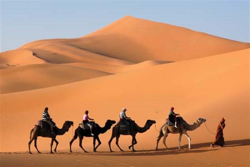 Farklı Ülkelerde Başınıza Gelebilecek Hırsızlık Örnekleri deve
