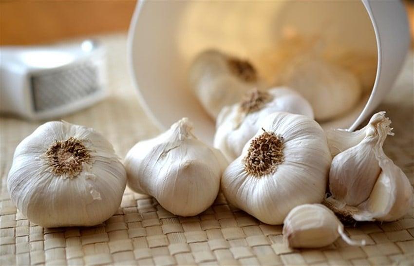 En Sağlıklı 10 Süper Yiyecek sarımsak