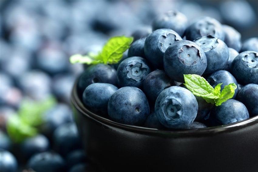 Diyetinizde Bulunması Gereken Yiyecekler yaban mersini