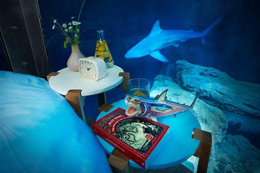 Airbnb Sayesinde Köpekbalıklarının Arasında Uyumak Akvaryum 1