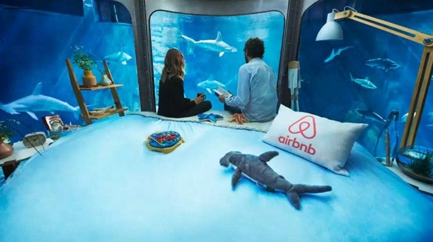 Airbnb Sayesinde Köpekbalıklarının Arasında Uyumak (5)