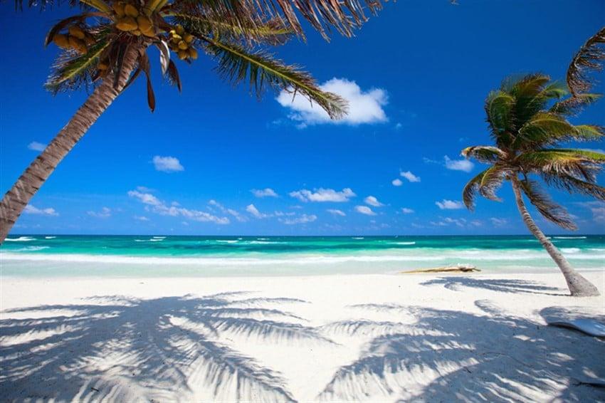 Tulum_Mexico_BeachPalmWhiteSand_BlueOrangeStudio_123rf (850 x 566)