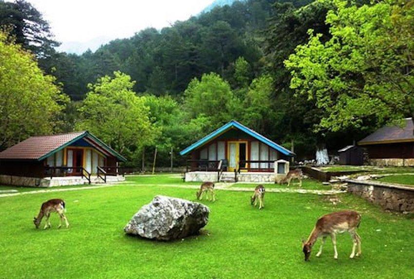 Llogara National Park