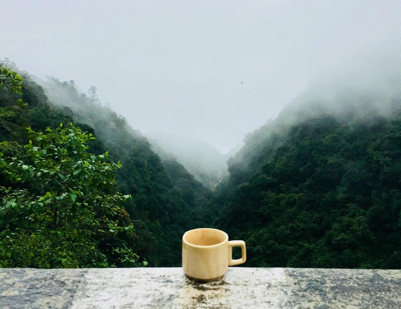 Sabah Kahvesi Ne Zaman İçilmeli?