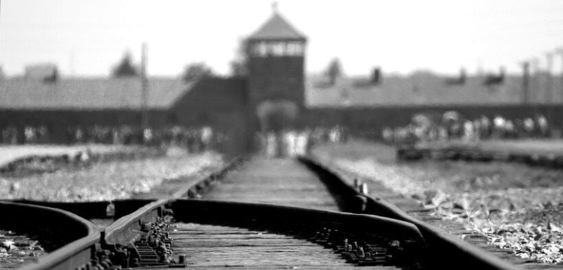 Krakow Auschwitz Rehberi