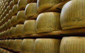 İtalya Peynir Bankası