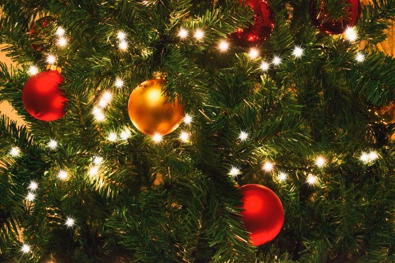 Polonya Noel Bayramı